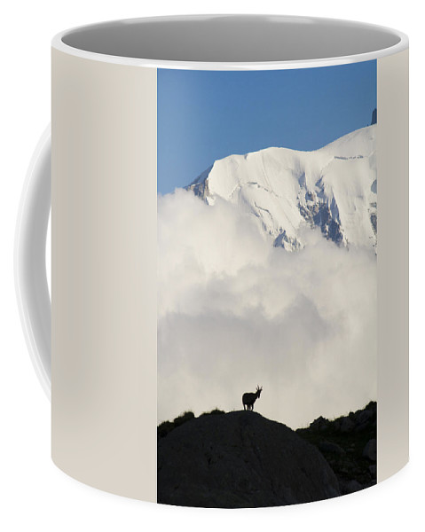 Alpine Ibex Coffee Mug featuring the photograph Contemplating Mont Blanc by Mircea Costina Photography