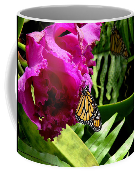 Fine Art Coffee Mug featuring the photograph Continuance by Rodney Lee Williams