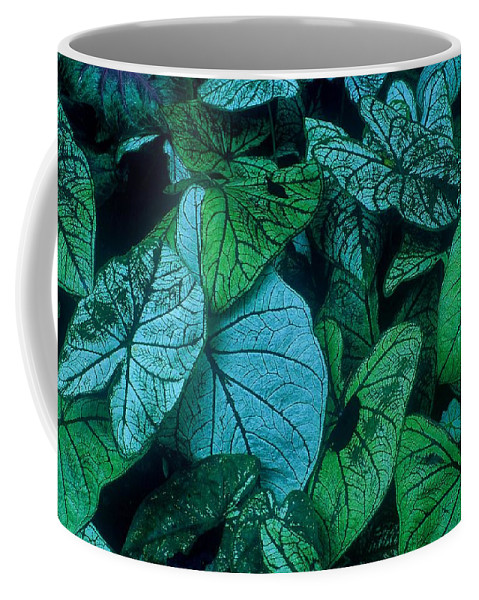 Fine Art Coffee Mug featuring the photograph Cool Leafy Green by Rodney Lee Williams