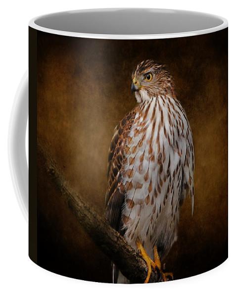 Bird Coffee Mug featuring the photograph Coopers Hawk Portrait 1 by Jai Johnson