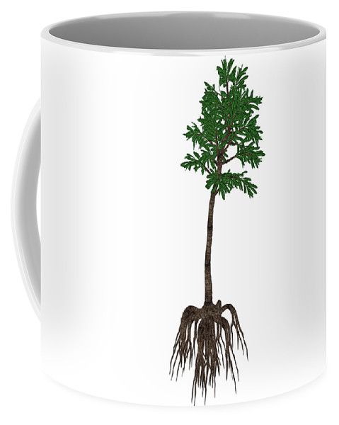 Angulostriatus Coffee Mug featuring the photograph Cordaites Prehistoric Plant by Elena Duvernay