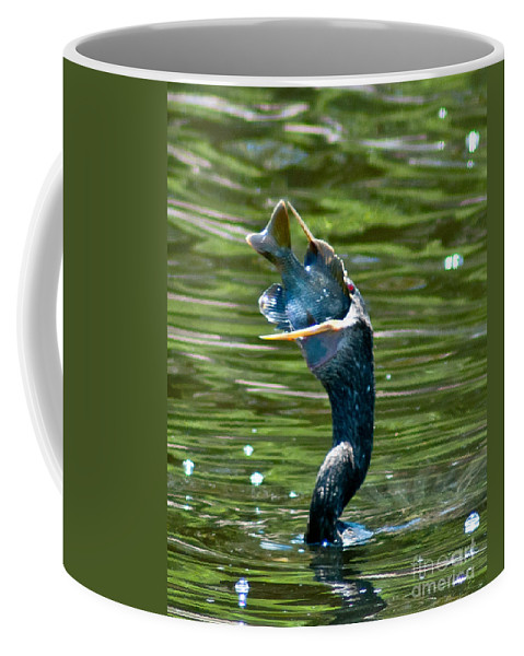 Cormorant Coffee Mug featuring the photograph Cormorant With Catch by Stephen Whalen
