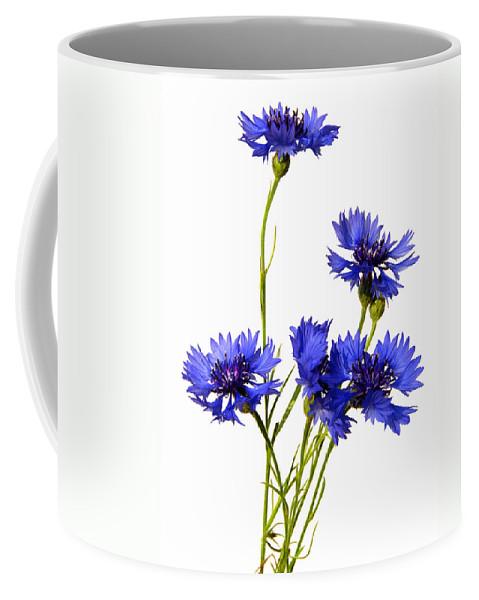 Centaurea Coffee Mug featuring the photograph Cornflowers by TouTouke A Y