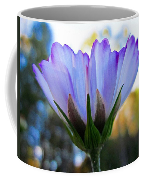 Cosmos Coffee Mug featuring the photograph Cosmos Petals Up by MTBobbins Photography