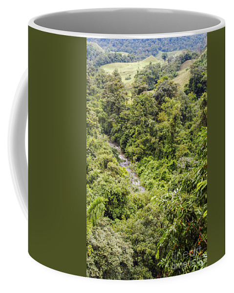 Arenal Volcano Region Costa Plant Plants Tree Trees River Rivers Stream Streams Water Landscape Landscapes Coffee Mug featuring the photograph Costa Rica Zip Line View by Bob Phillips