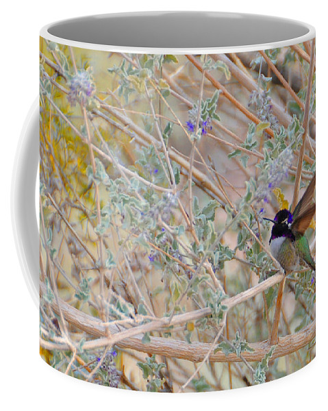 Hummers Coffee Mug featuring the photograph Costas Country by Lynn Bauer