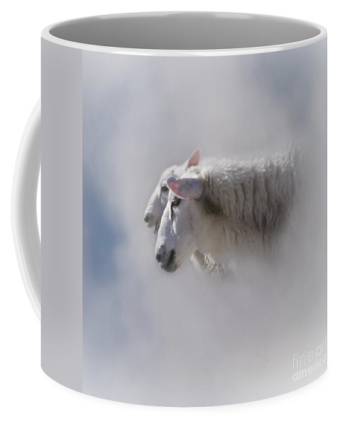 Heiko Coffee Mug featuring the photograph Counting by Heiko Koehrer-Wagner