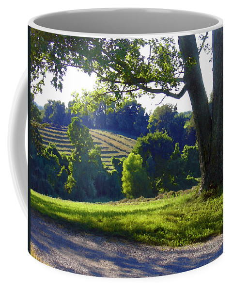 Landscape Coffee Mug featuring the photograph Country Landscape by Steve Karol