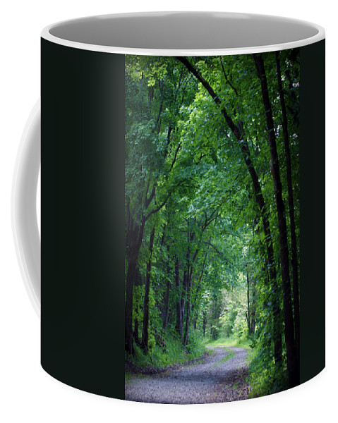 Tree Coffee Mug featuring the photograph Country Lane by Cricket Hackmann