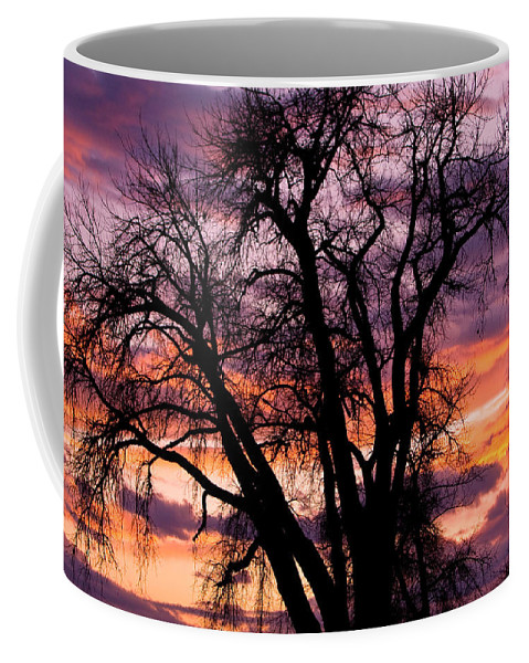 Sunsets Coffee Mug featuring the photograph County Sunset by James BO Insogna