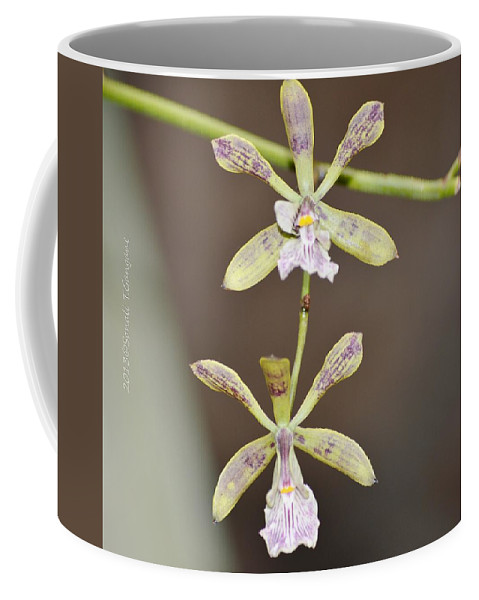 European Floral Coffee Mug featuring the photograph Couple Dance by Sonali Gangane