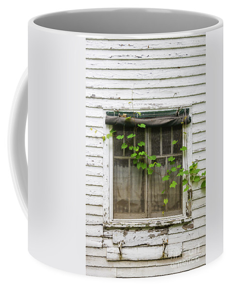 Window Coffee Mug featuring the photograph Covered by Margie Hurwich