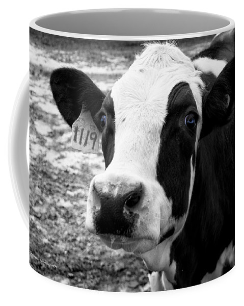 Animal Coffee Mug featuring the photograph Cow 1119 by Thomas Woolworth