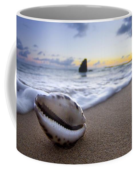 Cowrie Shell Coffee Mug featuring the photograph Cowrie Sunrise by Sean Davey