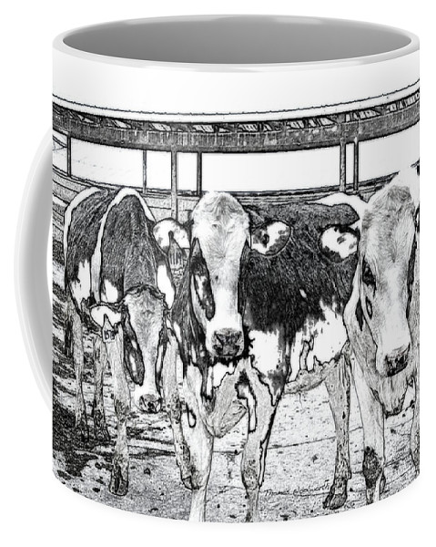 Animal Coffee Mug featuring the photograph Cows Pencil Sketch by Thomas Woolworth