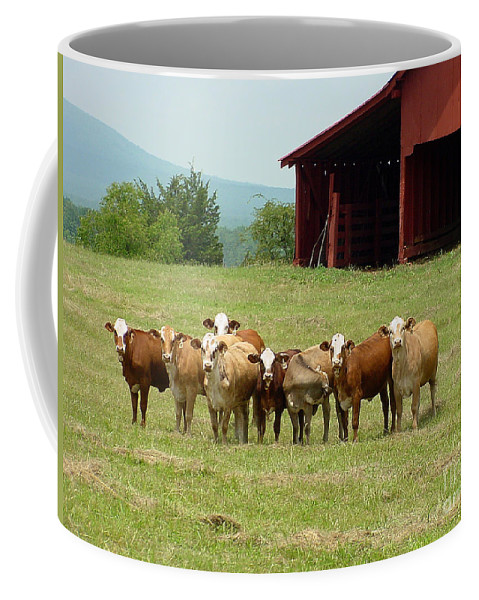 Cow Coffee Mug featuring the photograph Cows8918 by Gary Gingrich Galleries