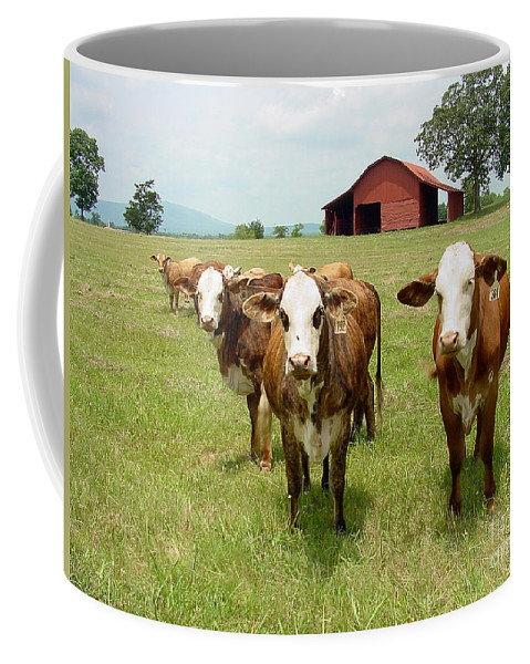 Cow Coffee Mug featuring the photograph Cows8931 by Gary Gingrich Galleries