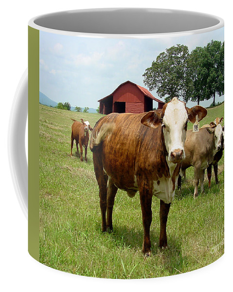 Cow Coffee Mug featuring the photograph Cows8945 by Gary Gingrich Galleries
