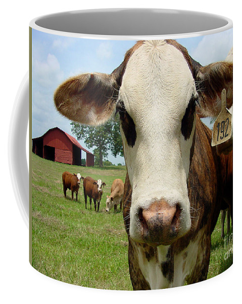 Cow Coffee Mug featuring the photograph Cows8957 by Gary Gingrich Galleries