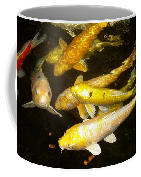 Fish Coffee Mug featuring the photograph Coy Koi by Deborah Crew-Johnson