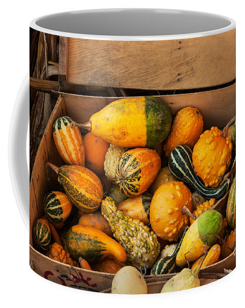 Iris Holzer Richardson Coffee Mug featuring the photograph Crate Filled With Pumpkins And Gourts by Iris Richardson
