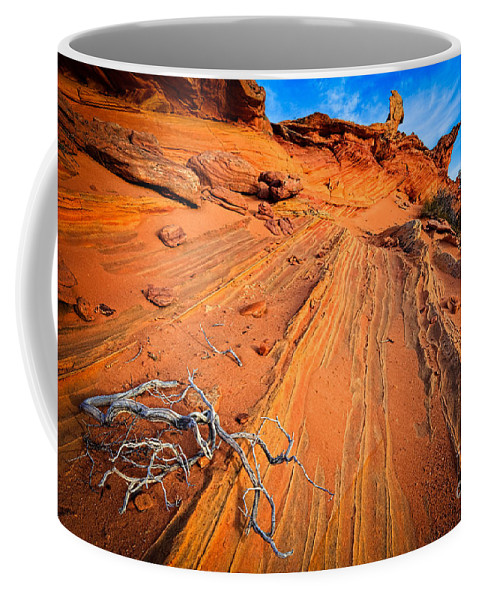 America Coffee Mug featuring the photograph Creeping Branches by Inge Johnsson
