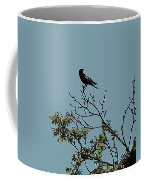 Crow Coffee Mug featuring the photograph Trickster Watch by Dora Hembree