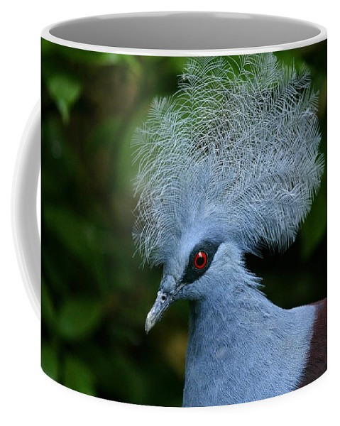 Animal Themes Coffee Mug featuring the photograph Crowned Pigeon Goura Cristata, Bali by David Santiago Garcia