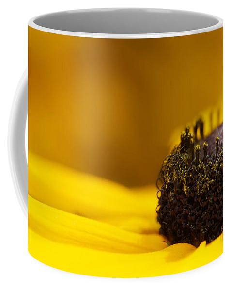 Lisa Knechtel Coffee Mug featuring the photograph Crowning Sunshine by Lisa Knechtel