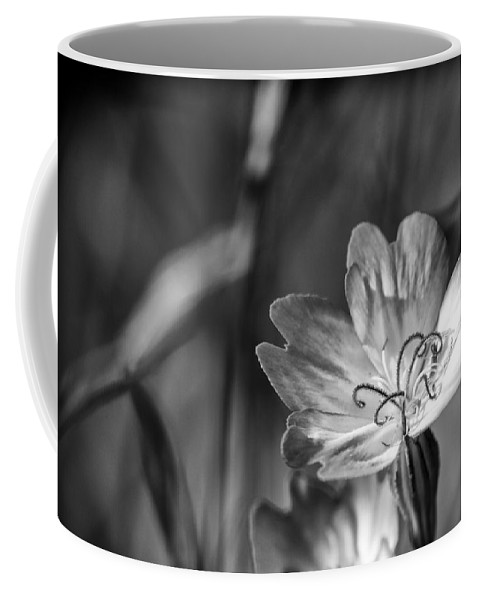 Viscaria Coffee Mug featuring the photograph Curves by Caitlyn Grasso