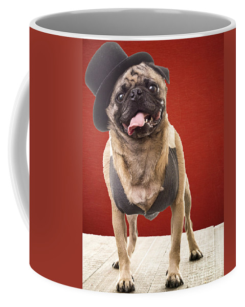 Pet Coffee Mug featuring the photograph Cute Pug Dog In Vest And Top Hat by Edward Fielding