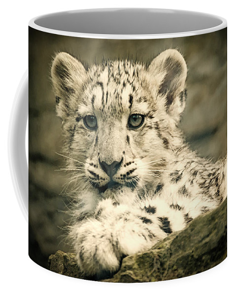 Marwell Coffee Mug featuring the photograph Cute Snow Cub by Chris Boulton