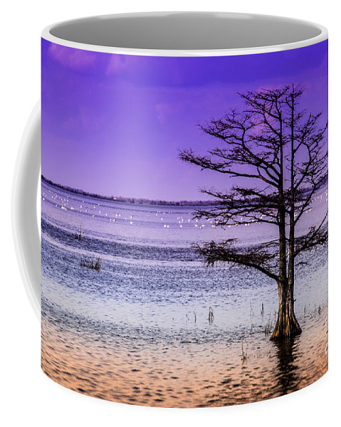 Cypress Coffee Mug featuring the photograph Cypress Purple Sky 2 by Scott Hervieux