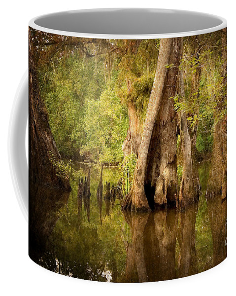 Water Coffee Mug featuring the photograph Cypress by Scott Pellegrin