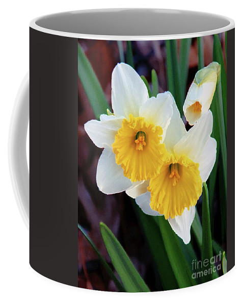 3 Daffodils Coffee Mug featuring the photograph Daffodil Art by Andee Design