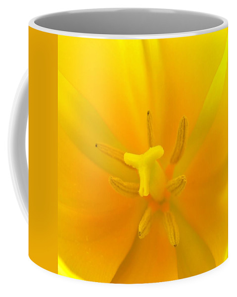 Flower Coffee Mug featuring the photograph Daffodil Center by Phyllis Meinke