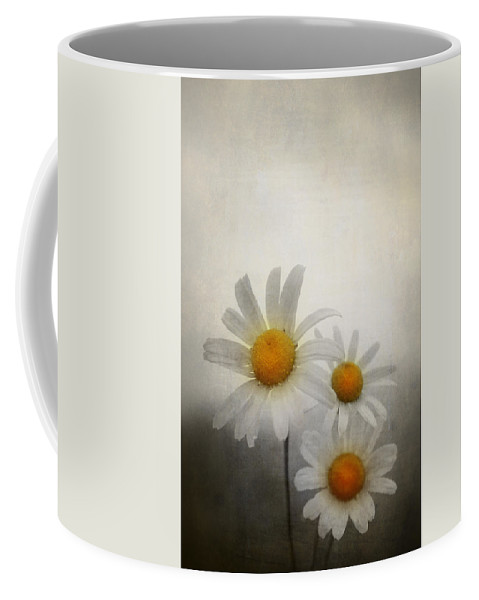Anniversary Coffee Mug featuring the photograph Daisies by Svetlana Sewell