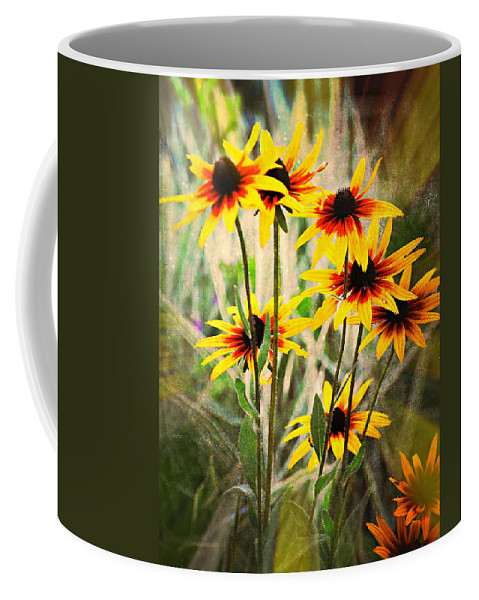 Flowers Coffee Mug featuring the photograph Daisy Do by Marty Koch