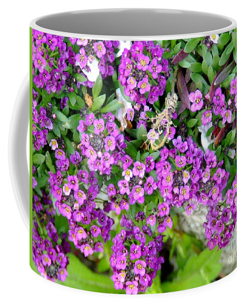Flower Coffee Mug featuring the photograph Dance Of Flowers by Andrea Anderegg