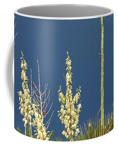 Yucca Coffee Mug featuring the photograph Dance Of The Yucca by Brady Lane