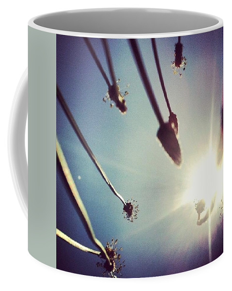 Hot Coffee Mug featuring the photograph Dandy Lion by Katie Cupcakes