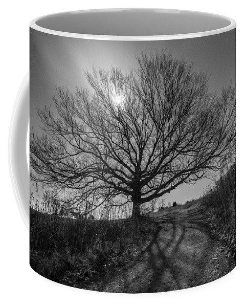 Pennsylvania Coffee Mug featuring the photograph Dark And Twisted by Kristopher Schoenleber