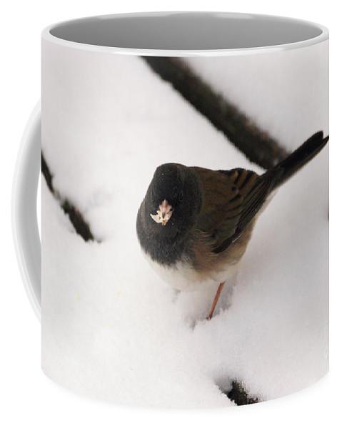 Junco Coffee Mug featuring the photograph Dark Eyed Junco by Lori Tordsen