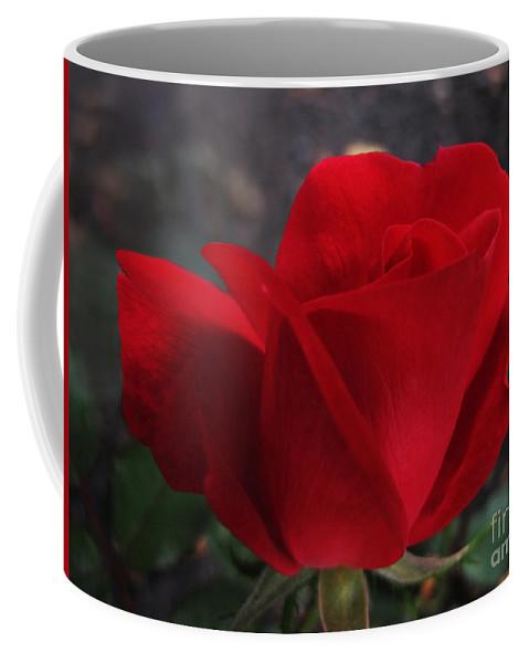 Rose Coffee Mug featuring the photograph Dark Red Rose by Arlene Carmel