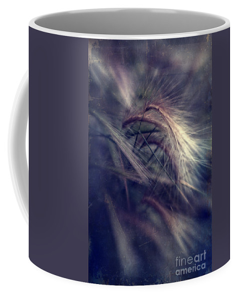Foxtail Barley Coffee Mug featuring the photograph darkly series II by Priska Wettstein