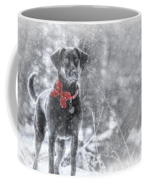Dog Coffee Mug featuring the photograph Dashing Through The Snow by Lori Deiter