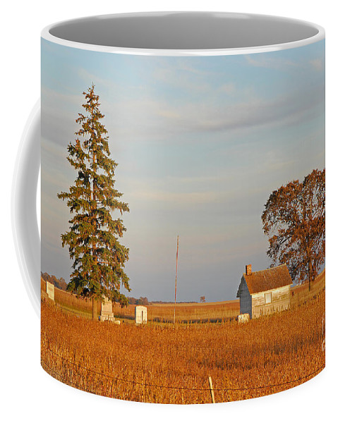 Cemetary Coffee Mug featuring the photograph Days End by Mary Carol Story