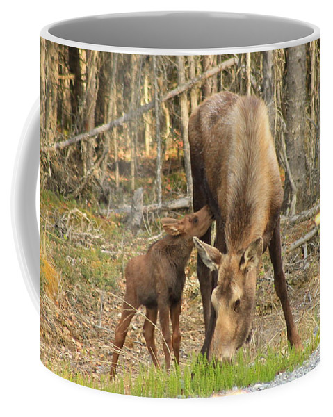 Moose Coffee Mug featuring the photograph Days Old by Rick Monyahan