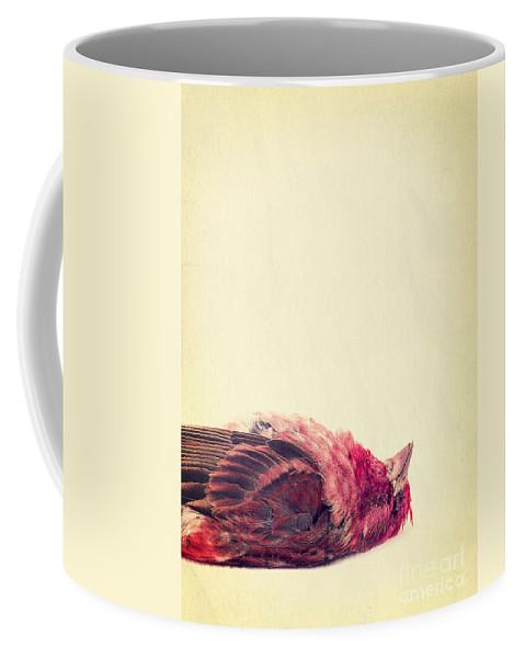 Dead Coffee Mug featuring the photograph Dead by Edward Fielding