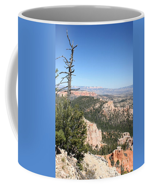 Tree Coffee Mug featuring the photograph Dead Tree Overlook - Bryce Canyon by Christiane Schulze Art And Photography
